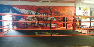 DSG Gym Mural